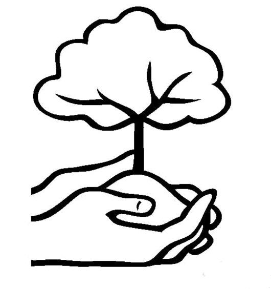 手捧小树的简笔画图片 小树简笔画 亲子简笔画大全图片